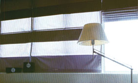 Roman blinds in dual fabrics