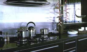 Sleek contemporary kitchen in steel